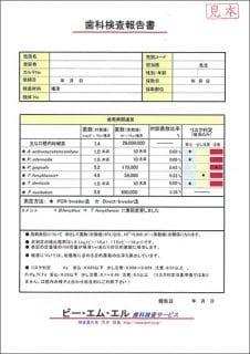 検査表01