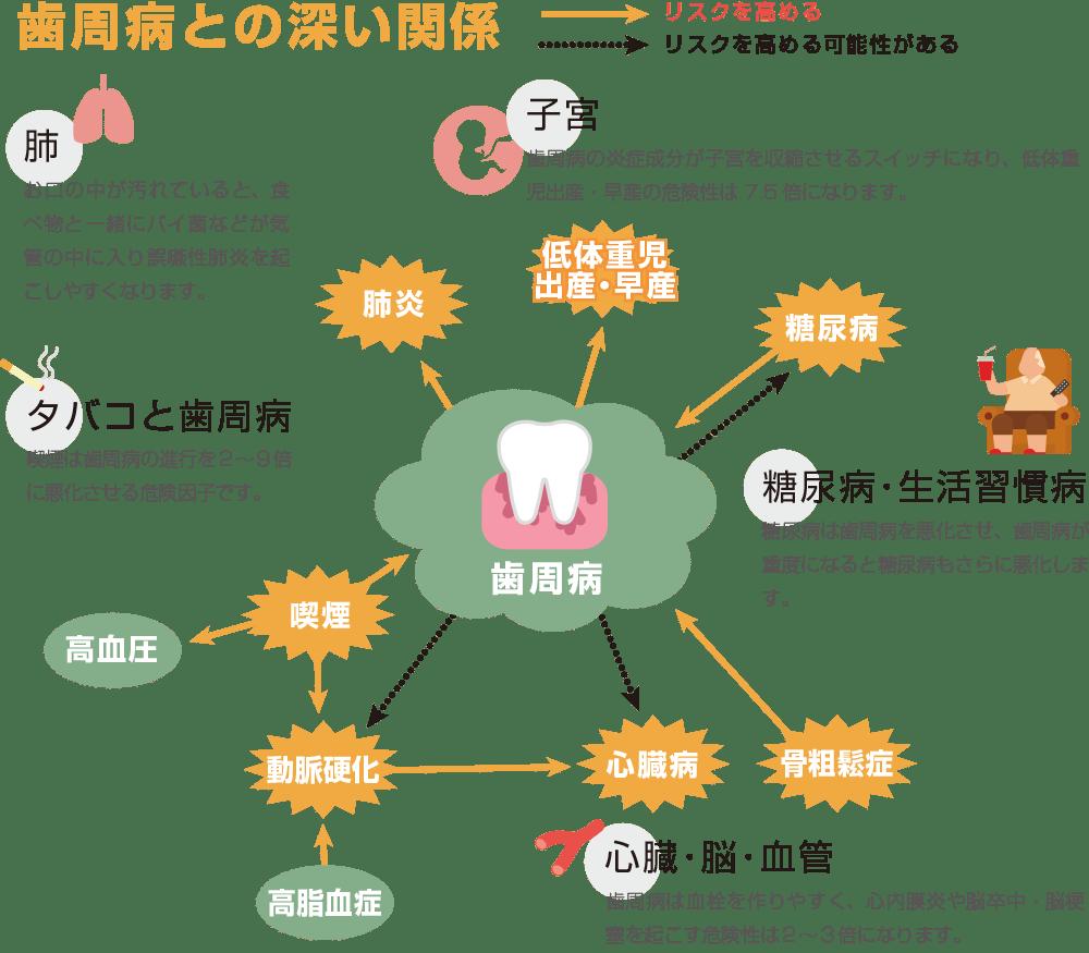 歯周病との深い関係