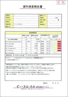 検査表02